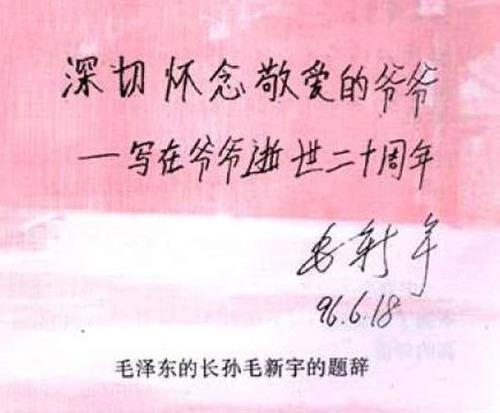 20130308_写真_中国_毛新宇_12