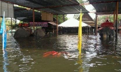 20111013_thai_news6