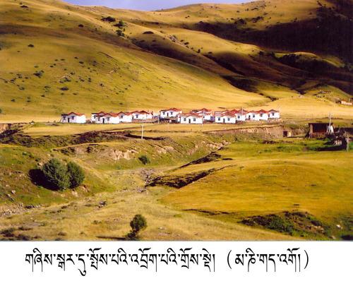 20120715_写真_チベット_8