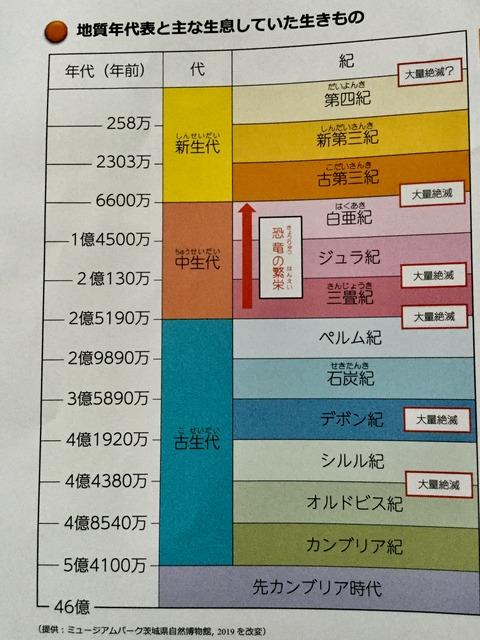 16AEADD6-7E08-47A5-864A-43019D623F69
