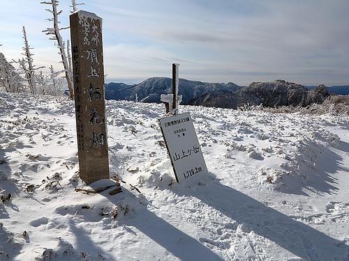 山上ヶ岳_お花畑