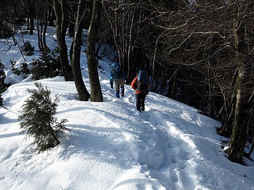 蛇谷ヶ峰稜線を歩く