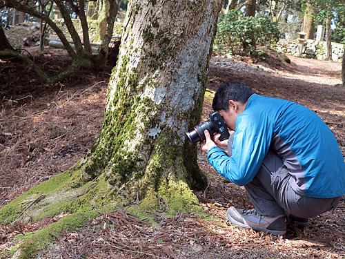 苔と撮る水玉写真家
