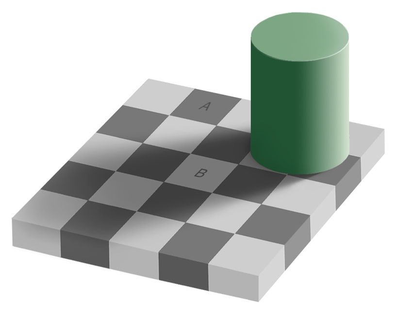 SOCR_Survey_VisualIllusions_2010_F5