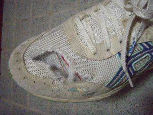 トレイル破れ靴