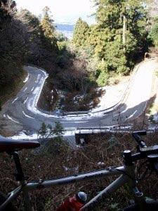 岳城若杉米の山道