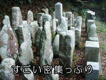 ダムで移動した墓