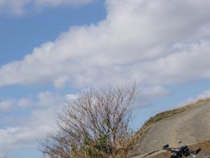 岳城若杉米の山自撮り2