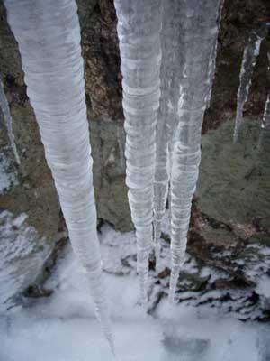 難所が滝2011-3