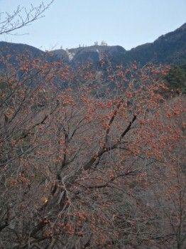 2012難所が滝三郡23