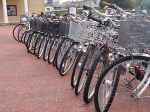 自転車ダークダックス