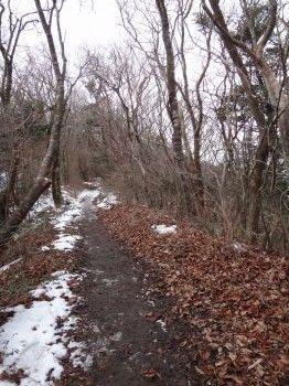 2012凍る滝8