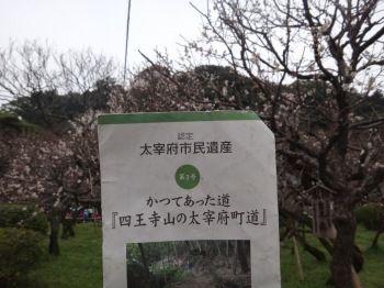 太宰府町道18