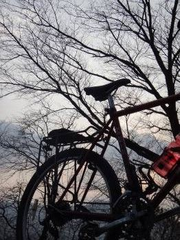 南蔵院自転車