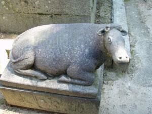太宰府天満宮のほほん牛