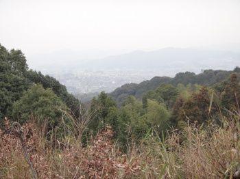太宰府町道31