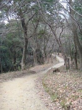 太宰府町道17