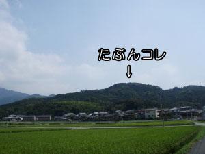 乙犬山全景