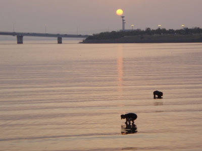 多々良川夕日