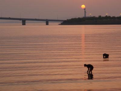 多々良川夕日2