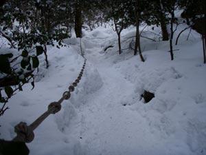難所が滝2011-7