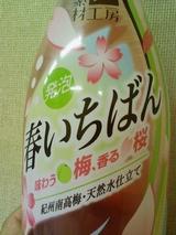 味わう梅、香る桜