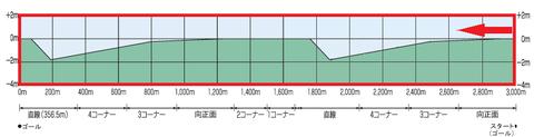 阪神芝3000