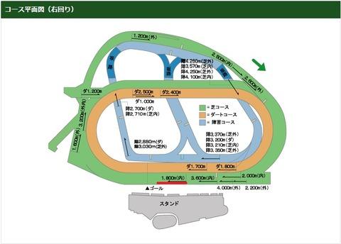 中山記念3