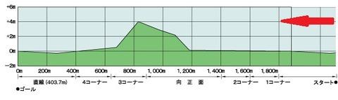 京都記念4