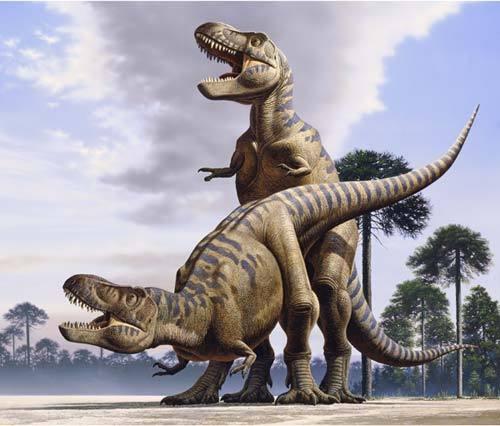 【朗報】恐竜のセックスの仕方がついに解明される