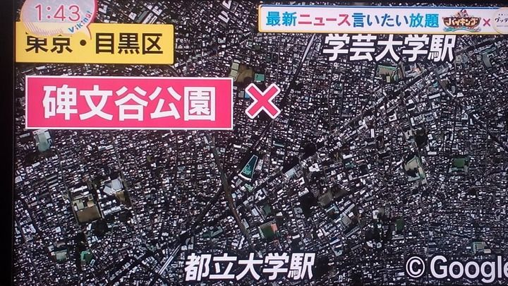 【速報】東京でバラバラ遺体 亀が遺体の一部をくわえていた