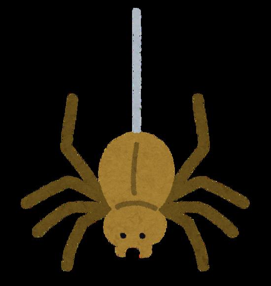 【画像】ギリシャの湖畔で数十万匹による全長1kmの巨大な蜘蛛の巣wwwwwww
