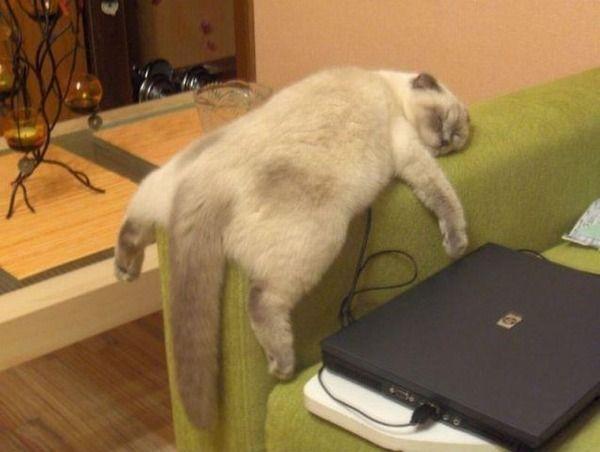 疲れてくると出てくる症状wwwwwwwwwwwww
