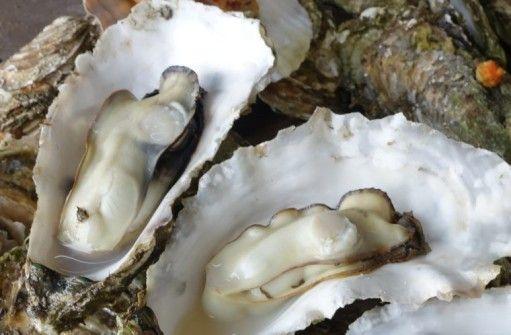 【画像あり】牡蠣ネイルすごすぎwwwwww