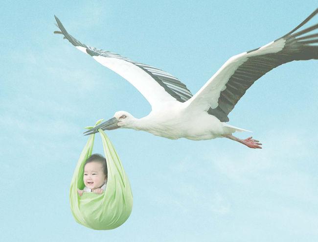 少年「赤ちゃんってどうやってできるの?」 コウノトリ「え!?」