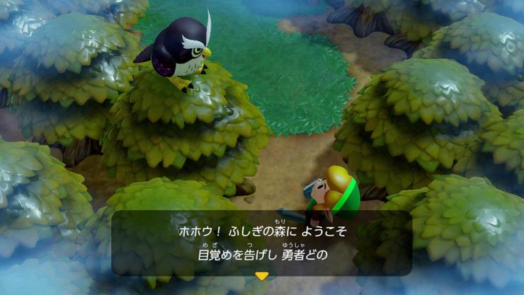 Zelda_夢をみる島
