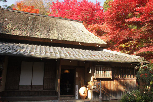 IMG_0335 安土城址近くの教林坊は、聖徳太子によって創建された古刹(こさつ)です。映...