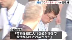 羽田空港に着陸後の機内でCAにわいせつか、男逮捕