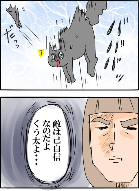 猫の毛_002