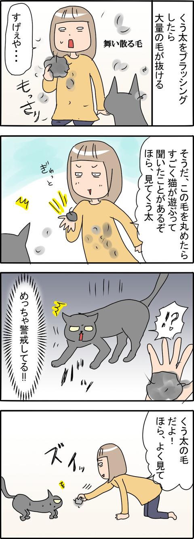 猫の毛_001