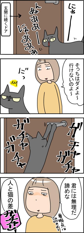 どあ_001