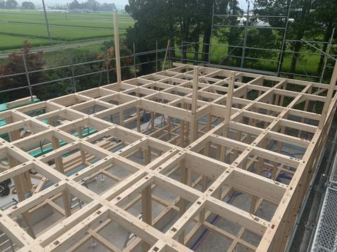 建て始めました