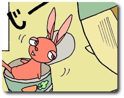$缶詰ウサギ