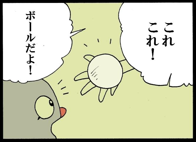 缶詰ウサギ-29