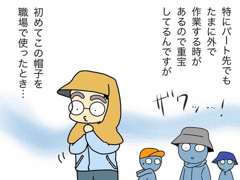 IMG_4221