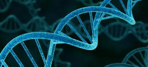 遺伝子の複製ミス