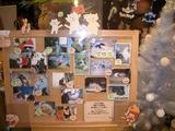 陽だまり堂さんの猫写真掲示板