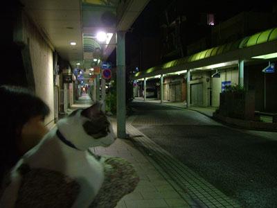 夜の日立の銀座通り