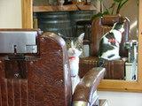 猫とバーバーチェア