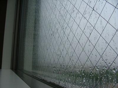 雨が窓を叩いていますにゃ